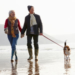 Two persons with a dog walking on beach