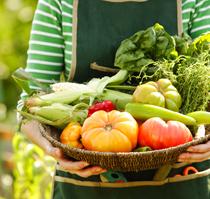 farmersmarket-sm