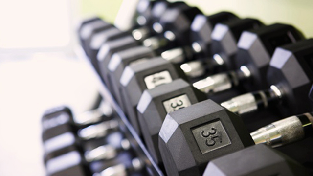 Dumbbell set in gym.