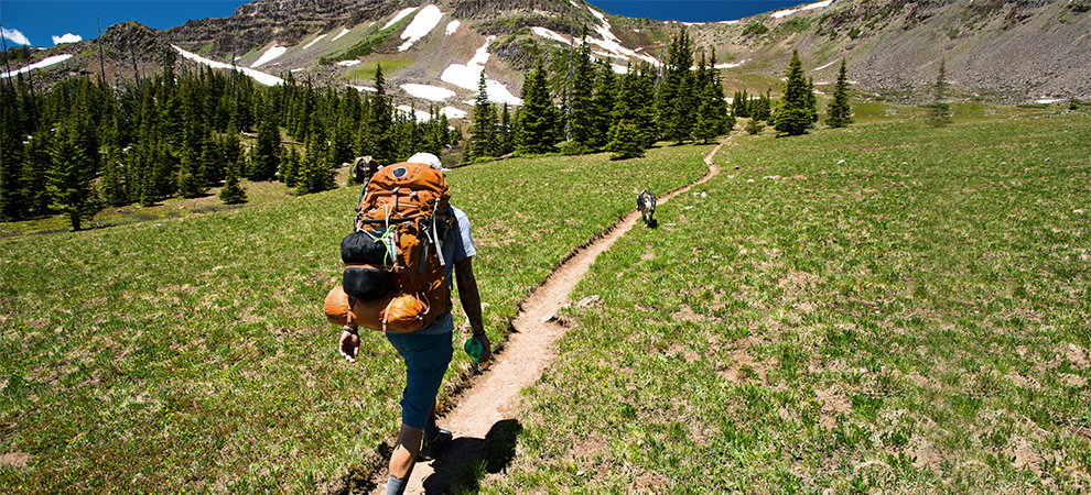 Backpacker and dog on trail leading toward snow-capped mountains.